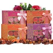 Luxury Serene Scented Tealight Candles Gift Set - 48 Scented Tealight Candles