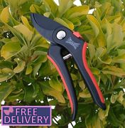 Bypass Pruner Secateurs 20mm from Wilkinson Sword - Soft Grip - Free Postage