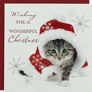 Luxury Christmas Cards - Pack of 8 from 37p with code