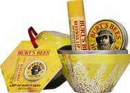 Burt's Bees Natural Gift Set, Beeswax Lip Balm 4.25 G, Hand Salve 8.5 G