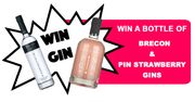 Win a Bottle of Pin Strawberry and Brecon Gins! at I Love Gin