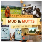 Win 5 Nights in a Campervan £100 Pooch and Mutt Voucher and More