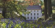 Win a One Night Romantic Escape at the Grove of Narbeth