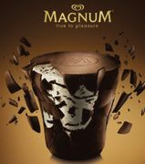 Magnum Ice Cream Tub ONLY £0.50p with Coupon!