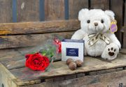 Single Rose, Bear and Chocs with Free Delivery