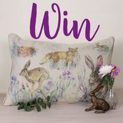 Win Cushion