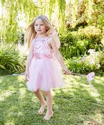 Fairy Dress and Wings and Wand