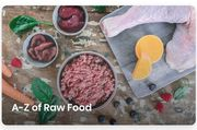 Raw Dog Food 4kg for 0.99