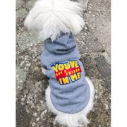 You've Got a Friend in Me Dog Hoody