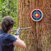 CROSSBOW TARGET 400 Special Price £2.97  Was £9.99