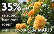 35% off Selected Bare Root Roses