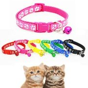 Pet Collars for 50p