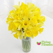 Exclusive 22% off Orders Flying Flowers - including Mother's Day Flowers