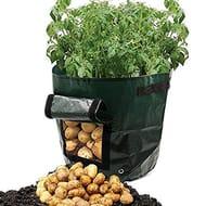 Potato Planter Bag to Grow Your Own!