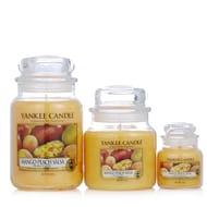 Yankee Candle Peach Salsa Large Medium & Small Jar Set