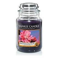 Yankee Candle Large Jar Candle, Black Plum Blossom