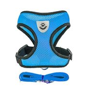 Bargain Harness + Lead for Dogs, Various Colours and Sizes