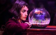 HALF PRICE | Amelie at Exeter Northcott Theatre