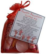 Zombie Apocalypse Survival Kit Gift (Mini Novelty Gift for All Occasions)