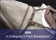 Win a Collegiate Breastplate