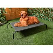 B&M Are Selling Garden Sun Loungers for DOGS!