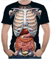 Human Skeleton 3D Printing Men's Short-Sleeved T-Shirt