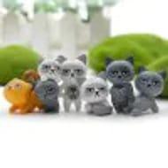 Unhappy Cats 6pcs