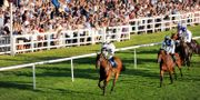 Summer Racing & Live Music for 2 W/drinks at Lingfield Park 48%off TravelZoo