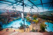 Alton Towers Waterpark £8 Entry with a Rubber Duck between June 10th - 21st