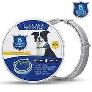 GLITCH? Flea and Tick Collar for Large and Small Dogs