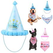 Dogs Birthday Party 80% off + Free Delivery