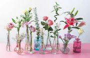 Exclusive 10% off Orders plus Free Delivery at Bunches Flowers