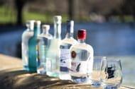Get 10% off Scottish Gin with True Origins Scottish Gin Festival