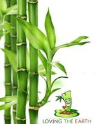 4 Bamboo Toothbrushes 100% Eco-Friendly and Biodegradable Toothbrush