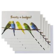 Thanks a Budgie Notecards X10