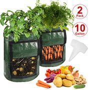 GLITCH - Garden Growing Bags - Only £2.59!