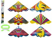 Pms 1.2m X 60cm Deluxe Garden Outdoor Kids Assorted Kite with 30m String