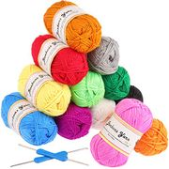 Fuyit Double Knitting Yarn 12x50g 100% Acrylic with 2 Crochet Hooks 1200
