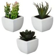 Mini Succulent Artificial Plant in Plastic Pot