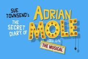 The Secret Diary of Adrian Mole - the Musical & West End Dining