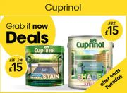 Great Cuprinol Offers at Wilko