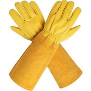 Rose Pruning Gloves - Today's Deals