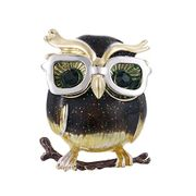Fliyeong Personality Owl Wearing Glasses Brooch FREE DELIVERY
