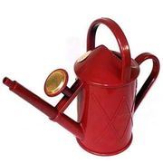 Free 1 Litre Indoor Watering Can with £50 Spend