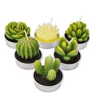 LA BELLEFE Cactus Tealight Candle Succulent Cactus Candle Gift Set Handmade