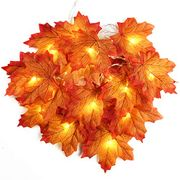 2M 20 LED Autumn Maple Leaves Wire Lights
