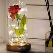 Beauty and the Beast Rose in a Light up Glass Dome.