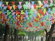 Multi Coloured Bunting Banner Triangle Flags Pennant 100M Double Sided