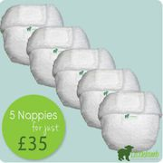 Cloth Nappy Little Lambs £35