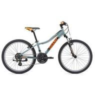Giant XtC Jr 1 2019 Kids Aluminium Hardtail Mountain Bike Grey